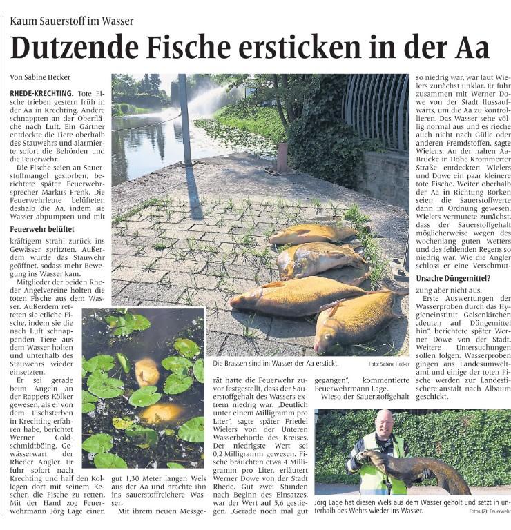 Dutzende Fische ersticken in der Aa